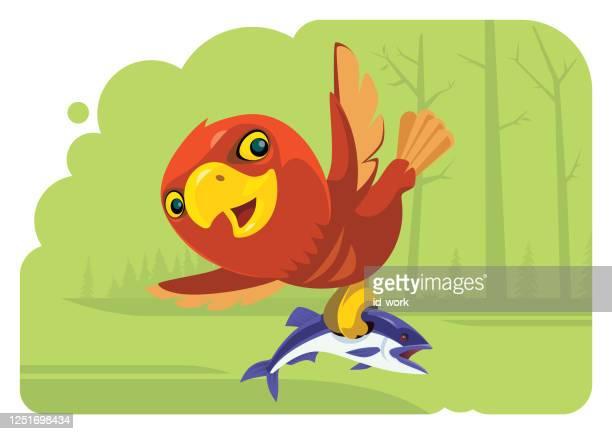 funny eagle catching fish - beak stock illustrations