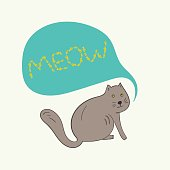 Funny gray cat with meow text in bubble
