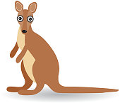 Funny kangaroo on a white background. vector