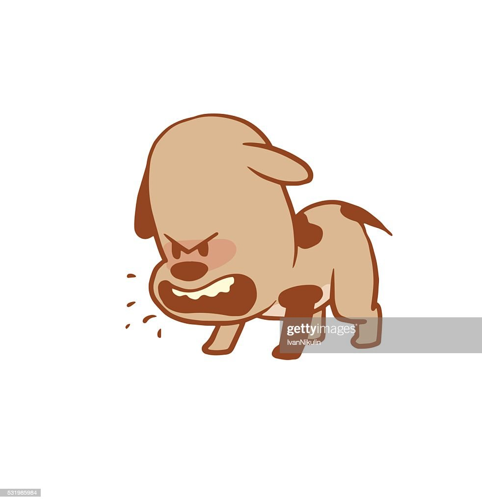 Funny little angry dog barking, color image