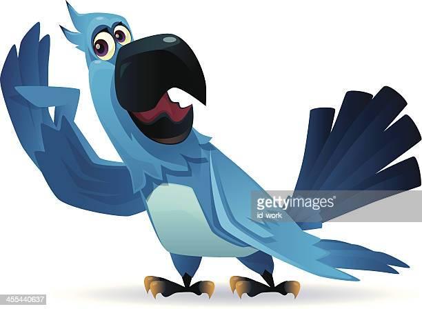 funny parrot - parrot stock illustrations, clip art, cartoons, & icons