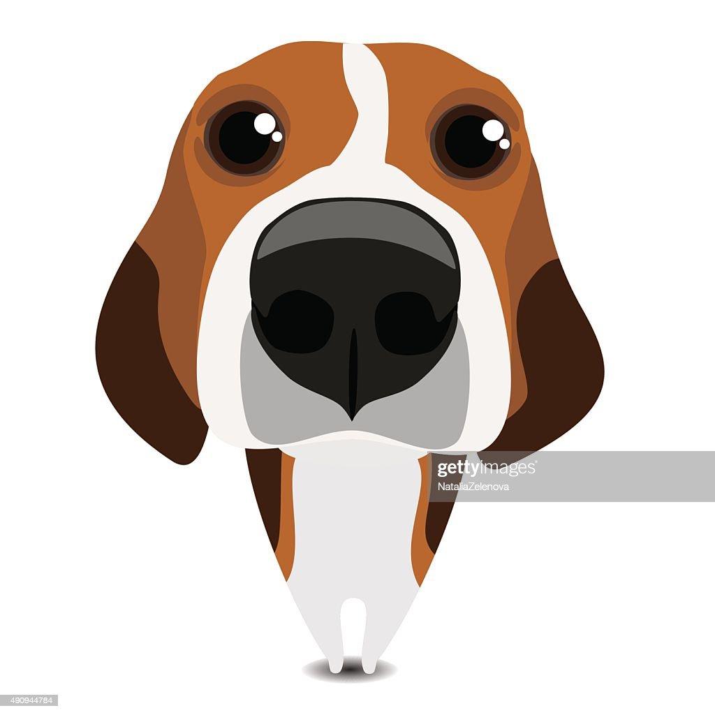 Funny sad beagle