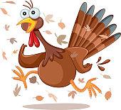 Funny Turkey Running Vector Cartoon