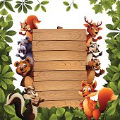 Funny Wild Animals in the Wood