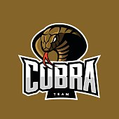 Furious cobra sport vector logo concept isolated on khaki background. Military professional team emblem design.