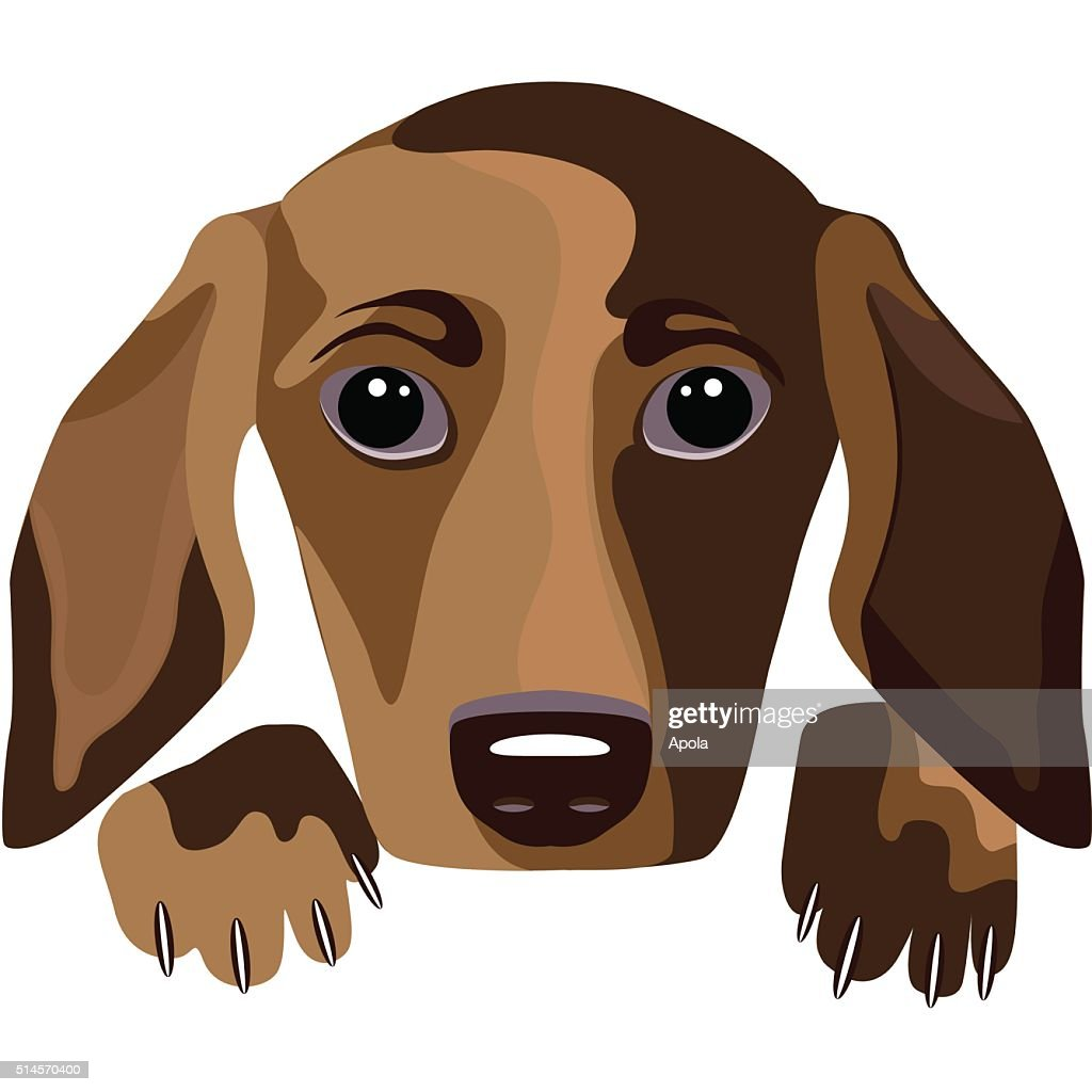 Futuristic dog - a portrait, white background, vector illustration