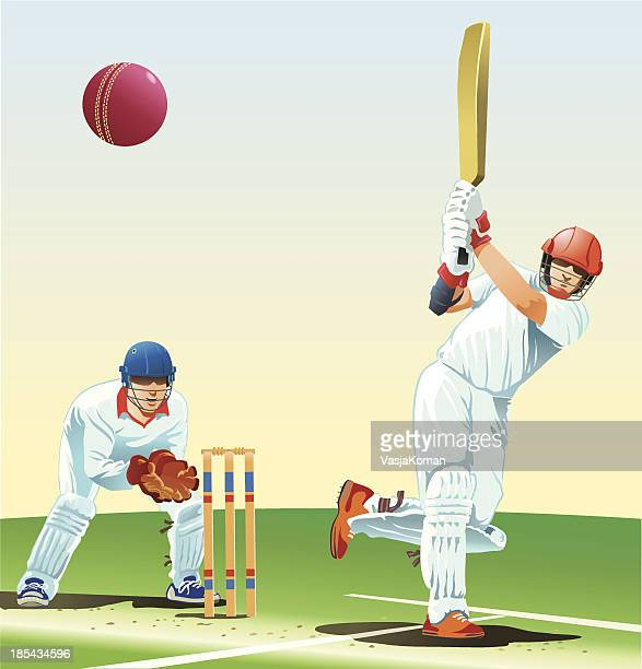 game of cricket - sport of cricket stock illustrations