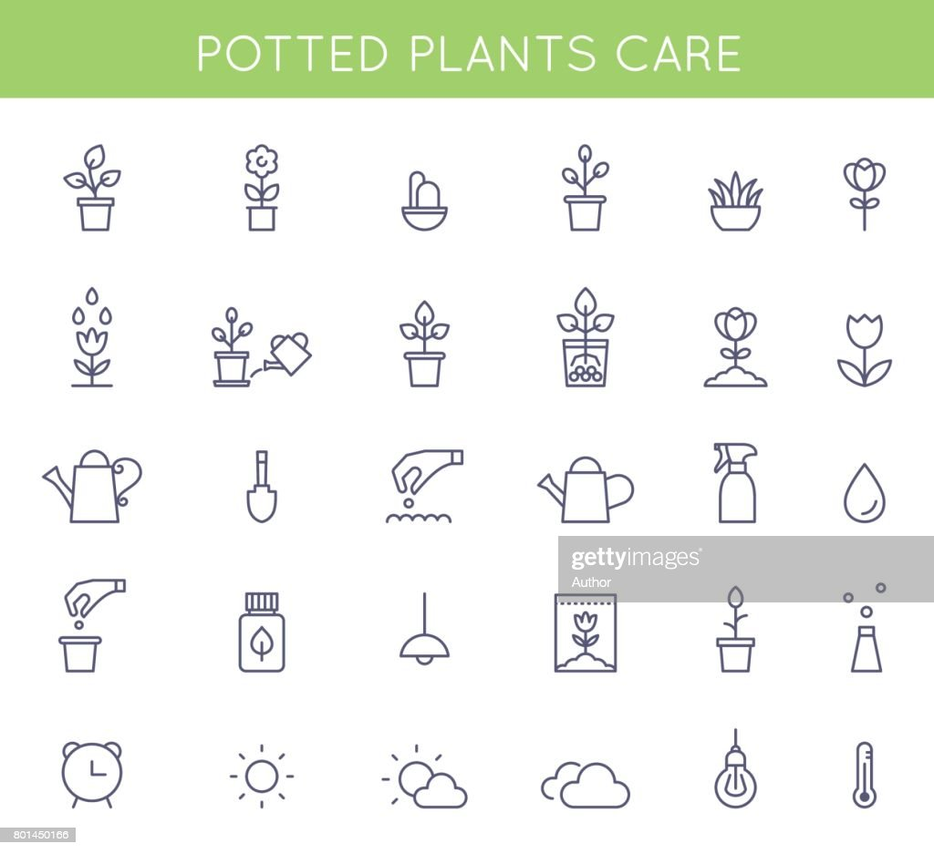 Garden and Potted Plants Care Instructions Icons and Pictograms. Vector Flat Outline Symbols