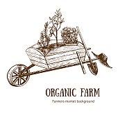 Garden Cart Organic Farm Hand Draw Sketch. Vector