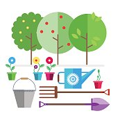 Garden. Fruit trees. Seedlings flowers in pots. Garden tools bucket, watering can, forks, shovel.