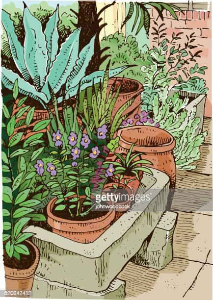 ilustrações de stock, clip art, desenhos animados e ícones de garden sketch vector illustration - planta de vaso