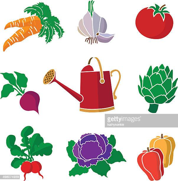 garden vegetables and watering can - red cabbage stock illustrations, clip art, cartoons, & icons
