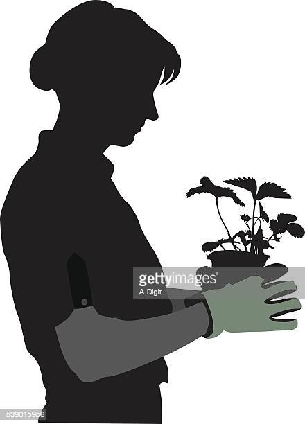 gardener silhouette and strawberry plant - landscaper professional stock illustrations, clip art, cartoons, & icons