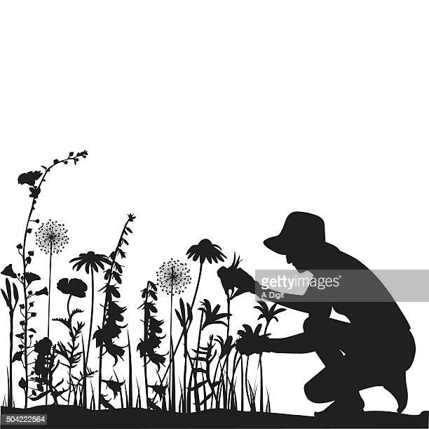 gardener - gardening stock illustrations