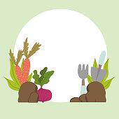gardening horticulture carrots beetroot rake shovel