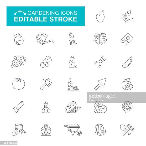 gardening and seeding editable stroke icons - watering can stock illustrations