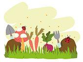 gardening horticulture beetroot carrot shovel rake