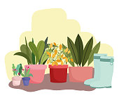 gardening potted plants flowers rubber boots