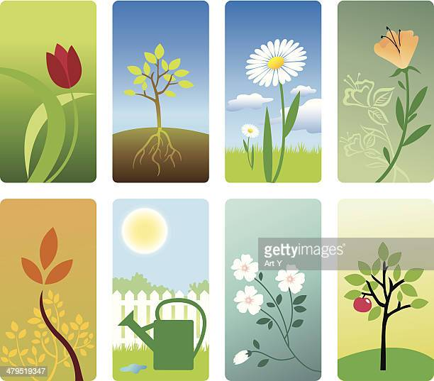 gardening - easter lily stock illustrations