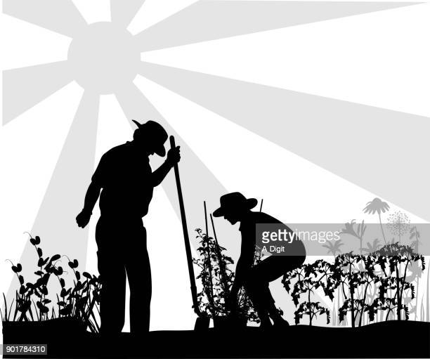 gardening with grandpa - gardening stock illustrations