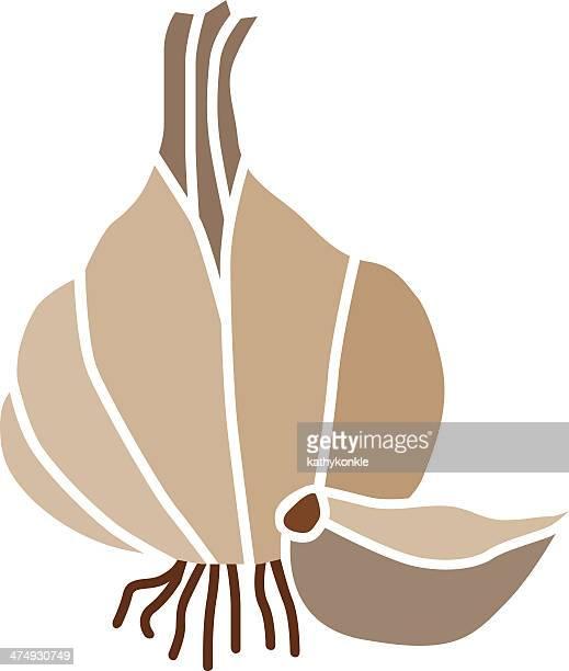 garlic in color - garlic clove stock illustrations