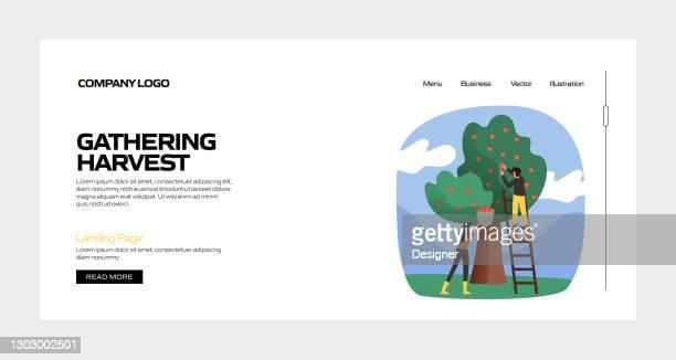 ランディングページテンプレート、ウェブサイトバナー、広告・マーケティング資料、オンライン広告、ビジネスプレゼンテーションなどの収穫コンセプトベクターイラストを集める - スマート農業点のイラスト素材/クリップアート素材/マンガ素材/アイコン素材