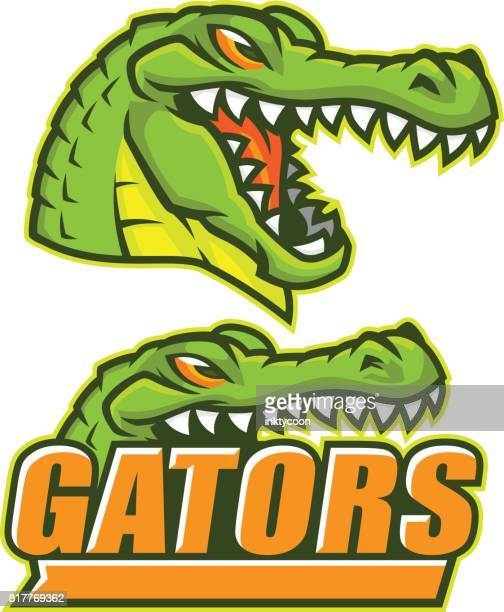 gator sports pack - alligator stock illustrations, clip art, cartoons, & icons