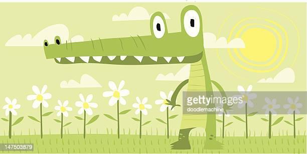 Gator Steve