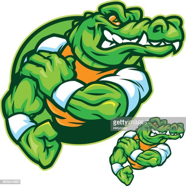gatorflex - alligator stock illustrations, clip art, cartoons, & icons