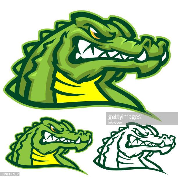 gators sports kit - alligator stock illustrations, clip art, cartoons, & icons