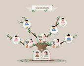 Genealogical tree. Family tree in flatdesign. Pedigree template.