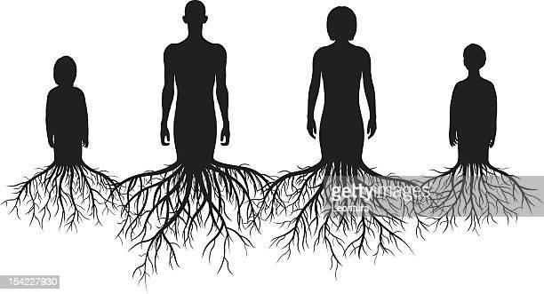 genealogy - root stock illustrations, clip art, cartoons, & icons