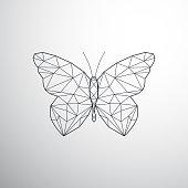 Geometric butterfly