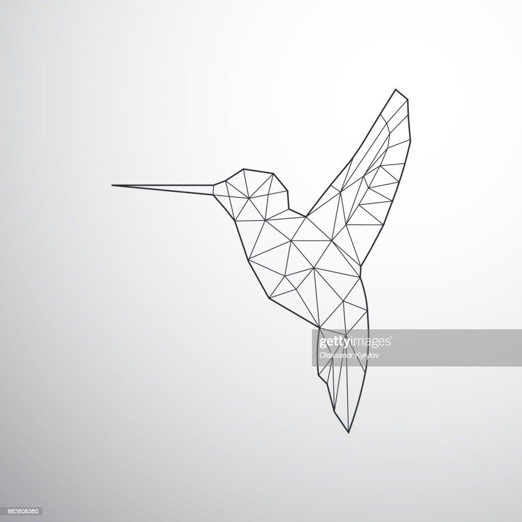 Geometrical Colibri