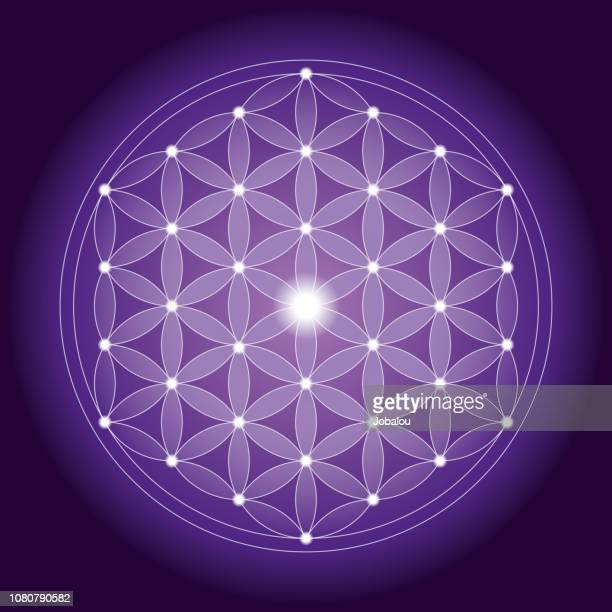 illustrations, cliparts, dessins animés et icônes de motif de fleur de vie géométrique avec une structure symétrique - chakra