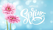 Gerbera Flower Background and Spring Lettering. Vector Illustration