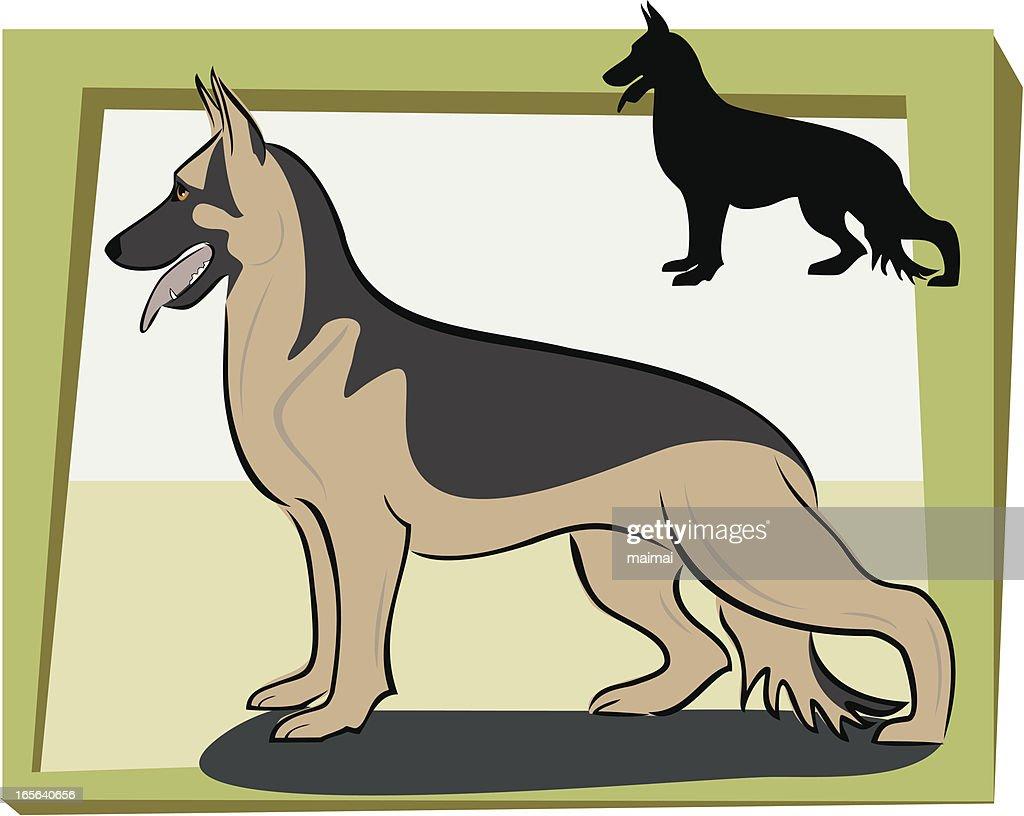 German Shepherd Side View