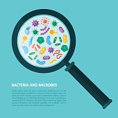 Germs and bacteria under magnifying glass