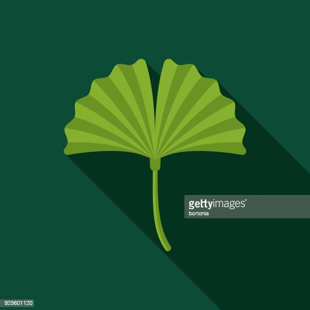 ginko flat design naturopathy icon with side shadow - nutritional supplement stock illustrations, clip art, cartoons, & icons