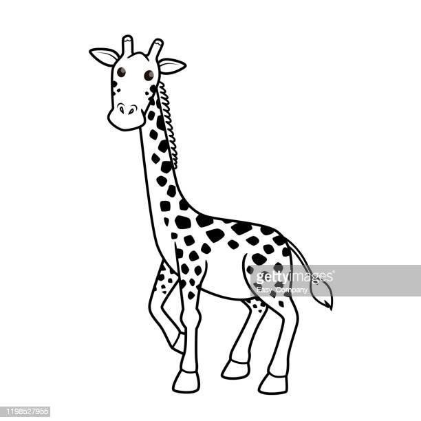 白い背景に隔離されたキリン漫画のキャラクター。子供の塗り絵のために。 - キリン点のイラスト素材/クリップアート素材/マンガ素材/アイコン素材