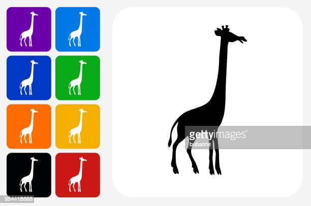 illustrations, cliparts, dessins animés et icônes de girafe icône carrée bouton set - girafe