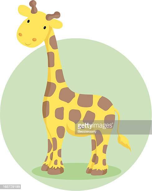 illustrations, cliparts, dessins animés et icônes de girafe illustration - girafe
