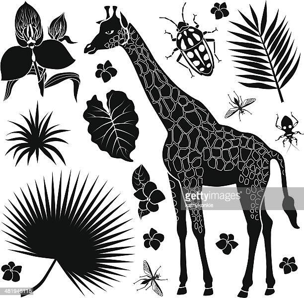giraffe with tropical plants and insects - assassin bug stock illustrations, clip art, cartoons, & icons