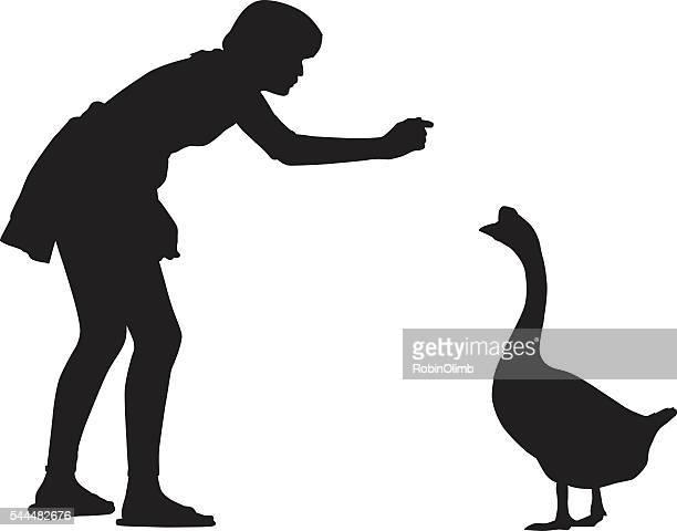 girl feeding goose - bending over stock illustrations, clip art, cartoons, & icons
