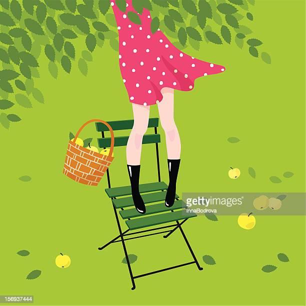 Girl gathers apples.