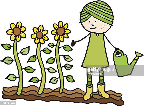 girl watering some sunflowers - cultivated stock illustrations