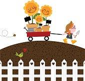 Girl with wheelbarrow and sunflowers Gardening spring