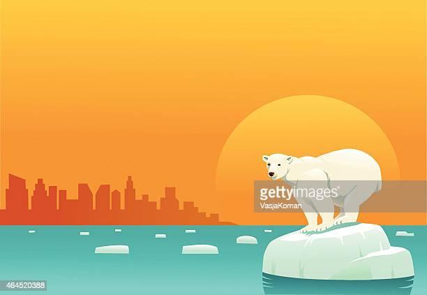 Aquecimento global-Urso Polar no gelo flutuante Floe3