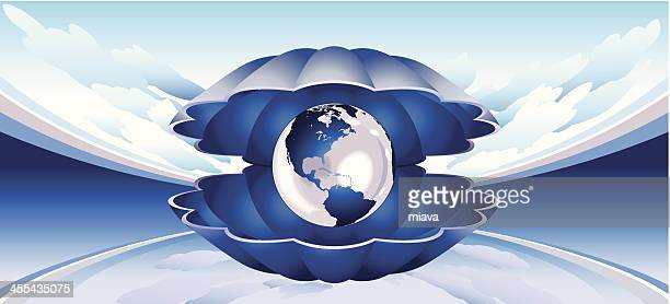 Globe seashell