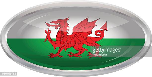 glossy button - flag of wales - welsh flag stock illustrations